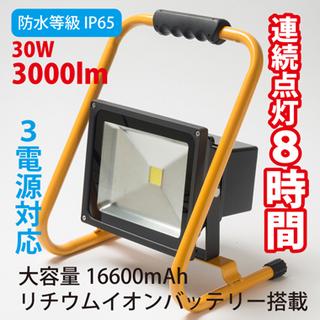 b30W16600_380.jpg
